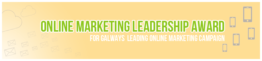 online marketing in galway overall marketing leadership award